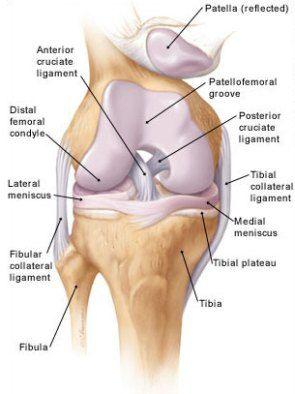innovatív kezelések az osteoarthritis kezelésére