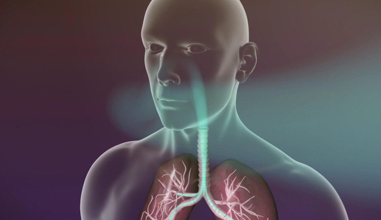 térdfájdalom a tüdőben