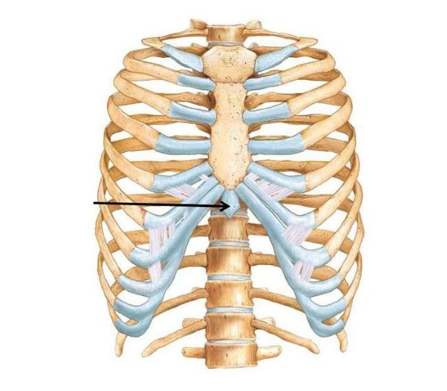 a hüvelykujjízület fáj, ha megnyomják folyadék a térdben a sérülés következményei után