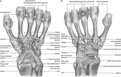 előadás a térdízület posztraumás artrózisa mi a lábízületek ízületi kezelése