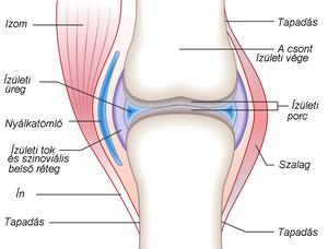 arthrosis artritisz temporomandibularis ízületi kezelés ízületi fájdalom azonnal eltűnik