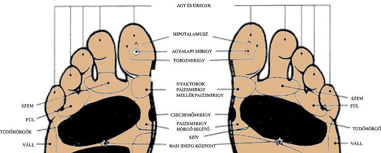 Kiütések és fájdalmak az izmokban és az ízületekben. A fertőzéses eredetű ízületi gyulladásról