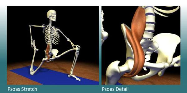 a csípőízület lába fáj, amikor ülsz csípőízületek fájdalma csontritkulással