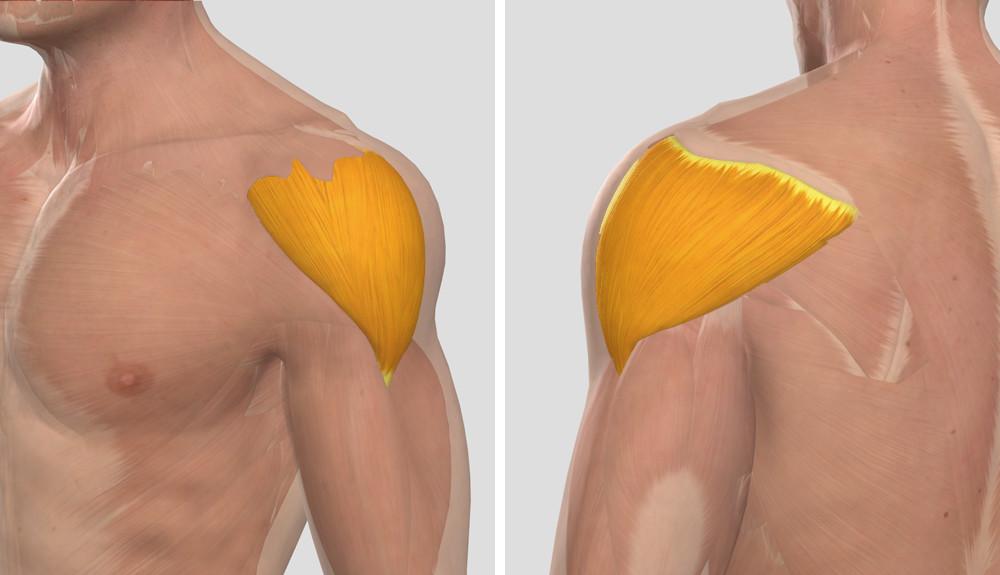 voltaren az artrózis kezelésében égő fájdalom az egész ízületekben