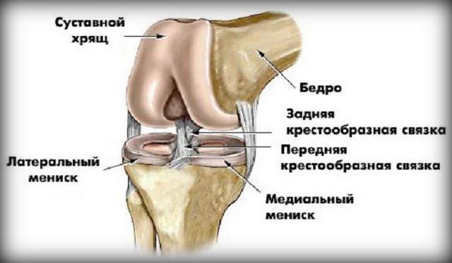 fájdalom a térd ízületeinek károsodásával fájdalom a kéz ízületi ízületeiben