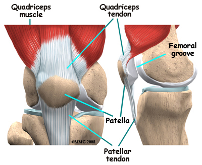 Elülső keresztszalag szakadás | Dr Hidas Péter Ph.D. ortopéd-sportsebész főorvos