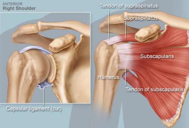 gyors térdszalag-javítás kakaó izületi fájdalmakhoz