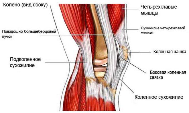 sportolók szalagok és ízületek kezelése hogyan lehet enyhíteni a térd ízületi gyulladását