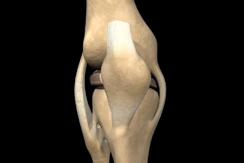 A térdízület-ligamentózis: mi az, annak okai és kezelése - Frissítő