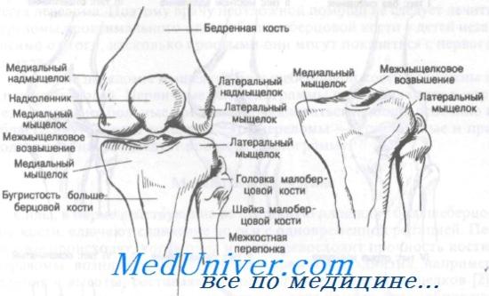 hogyan kell kezelni a lábujjak ízületeinek artrózisát