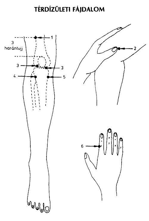 Tippek, praktikák térdfájdalom ellen - EgészségKalauz, Pitypang térdízületi kezelés